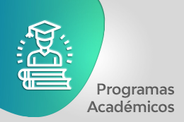 Programas Académicos Facultad de Ingeniería